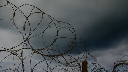 Barbed wire trembling in the wind