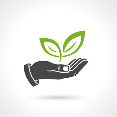 Hand Holding Green Leaves Ecology Vector Symbol