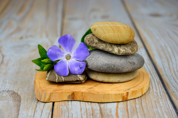 zen stones on old grey used wood with purple flower