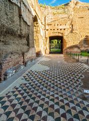 Floor in the Baths of Caracalla in Rome
