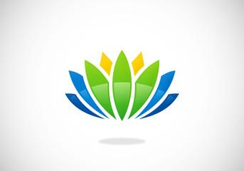 lotus flower color vector logo
