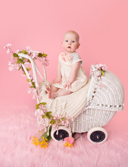 Baby, Pink Cherry Blossoms, in Stroller