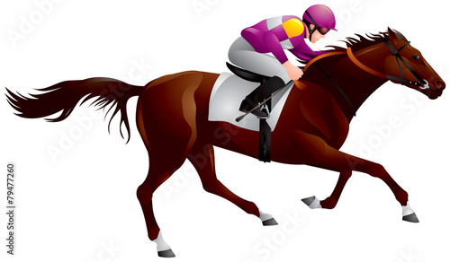 Derby, Equestrian sport horse and rider 6