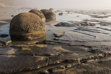 Moeraki boulders at low tide
