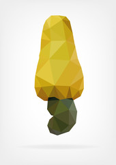 Low Poly Cashew nut and fruit