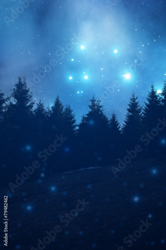 Fototapeta Starry night with forest silhouettes.