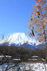 雪の忍野村と富士山