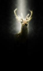 Stolzer Hirsch steht in einem Lichtstrahl | Portrait