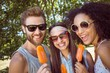 Hipster friends enjoying ice lollies - 79492896
