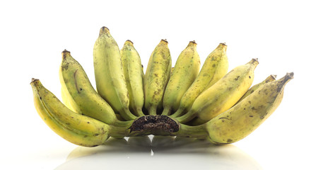 Bunch of cultivated banana - tropical fruit on white