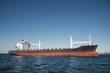 Öl Tanker Schiff am Meer vor blauer Kulisse - 79496831