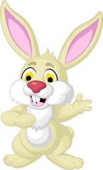 rabbit cartoon dancing