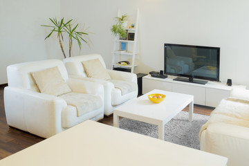 Luxurious living room with with television set