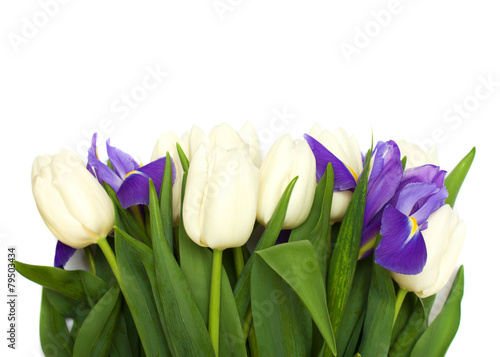 Foto op Canvas Iris Spring tulips and iris flowers.