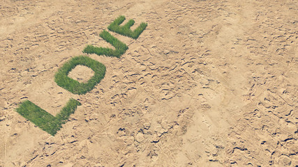 Love text made from fresh grass 2