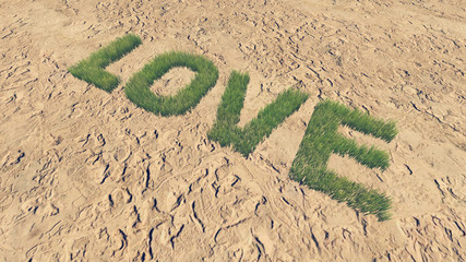 Love text made from fresh grass 3