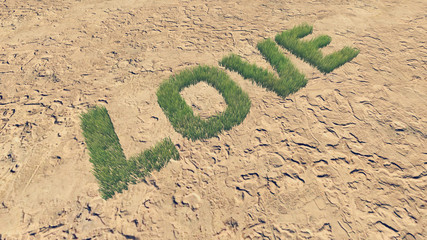 Love text made from fresh grass 4