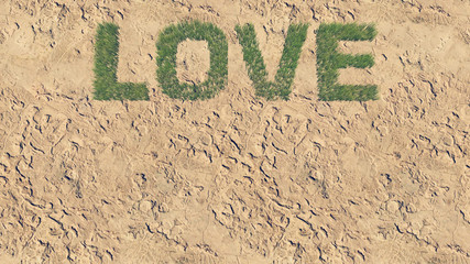 Love text made from fresh grass 5