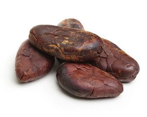 Cacao beans isolated