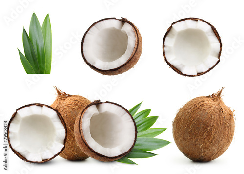 Coconut isolated - 79508423