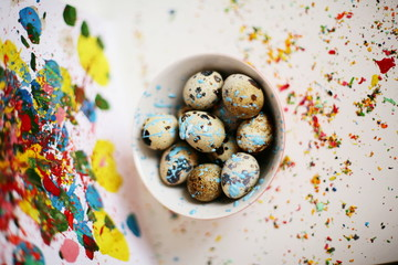 Painted quail eggs on colorful background