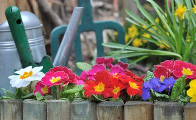 bordure de fleurs