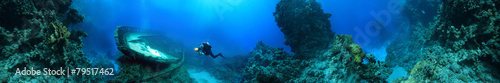 wreck at the bottom of the Red Sea - 79517462