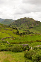 Dry stone walls and Martindale Valley The Lakes UK