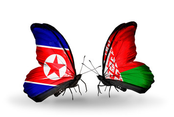 Two butterflies with flags  North Korea and Belarus