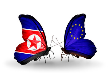 Two butterflies with flags North Korea and European Union