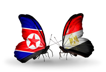 Two butterflies with flags North Korea and Egypt