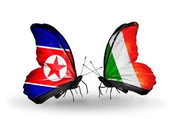 Two butterflies with flags North Korea and  Ireland