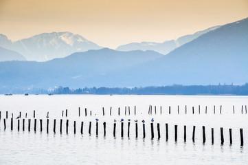 Lac d'Annecy rive Ouest