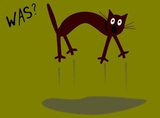 WAS? Katze