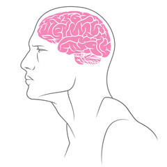 brain color ver