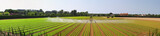Panoramic irrigation field