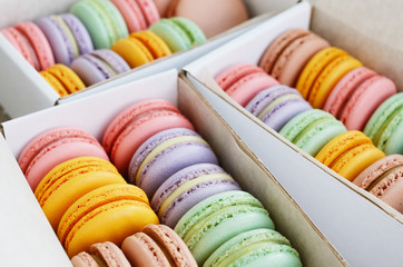 Set of pastel colored macaroon in the boxes