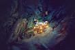 Leinwanddruck Bild - Magical mushrooms in a dark forest