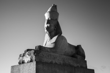 Granite sphinx. Black and white photo of monument