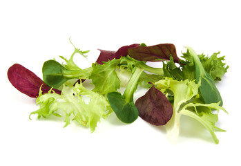 Fresh green and purple lettuce, corn salad leaves on white