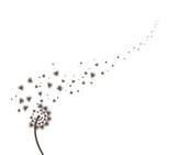 Blow Dandelion