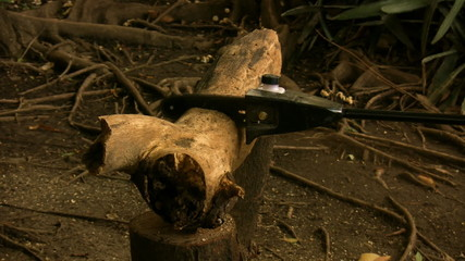 Chainsaw Cutting Two Logs