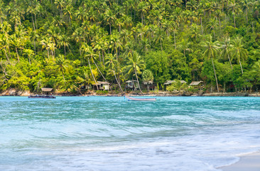 Tropical forest, sea coast and mountains. Siamese bay, Phangan,