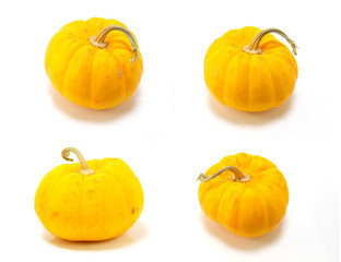 collection of mini pumpkin isolated on a white background