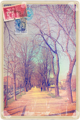 Vintage postcard with avenue