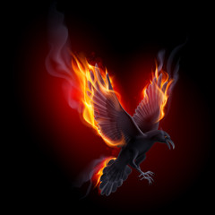 Fire raven
