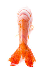 large shrimp cooked on a white background