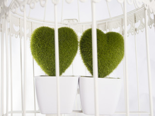 hearts in a cage