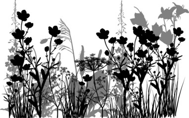 black and grey flowers in grass isolated on white