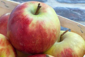 Pommes dans un cageot sur fond brique